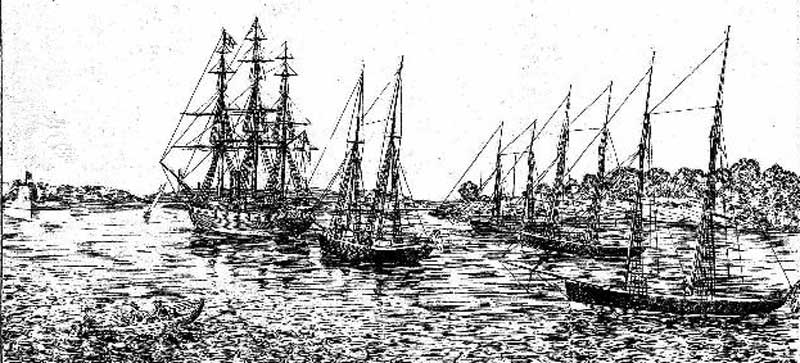 From left: HMS Clio, HM Schooners Sandfly, Conflict, Beagle, and Renard, at anchor in Farm Cove, Port Jackson. Image: The Sydney Mail and NSW Advertiser, (NSW), Sat 2 Aug 1873, p. 1. Reproduction: Peter de Waal
